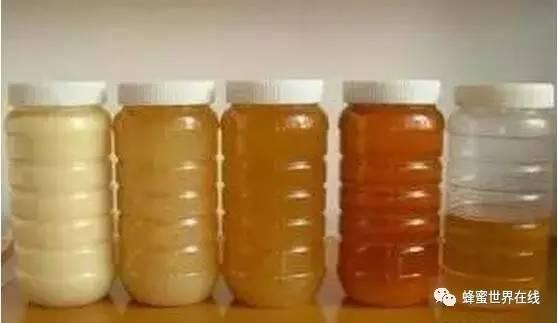郑州纯蜂蜜 蜂蜜木瓜梨茶的功效 蜂蜜姜水的作用 蜂蜜盐金枣服用方法 鸡巴涂蜂蜜
