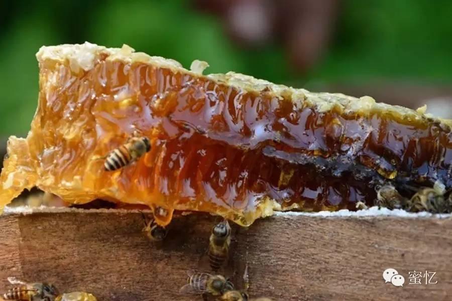 蜂产品食用方法,用量,禁忌全了,值得收藏~
