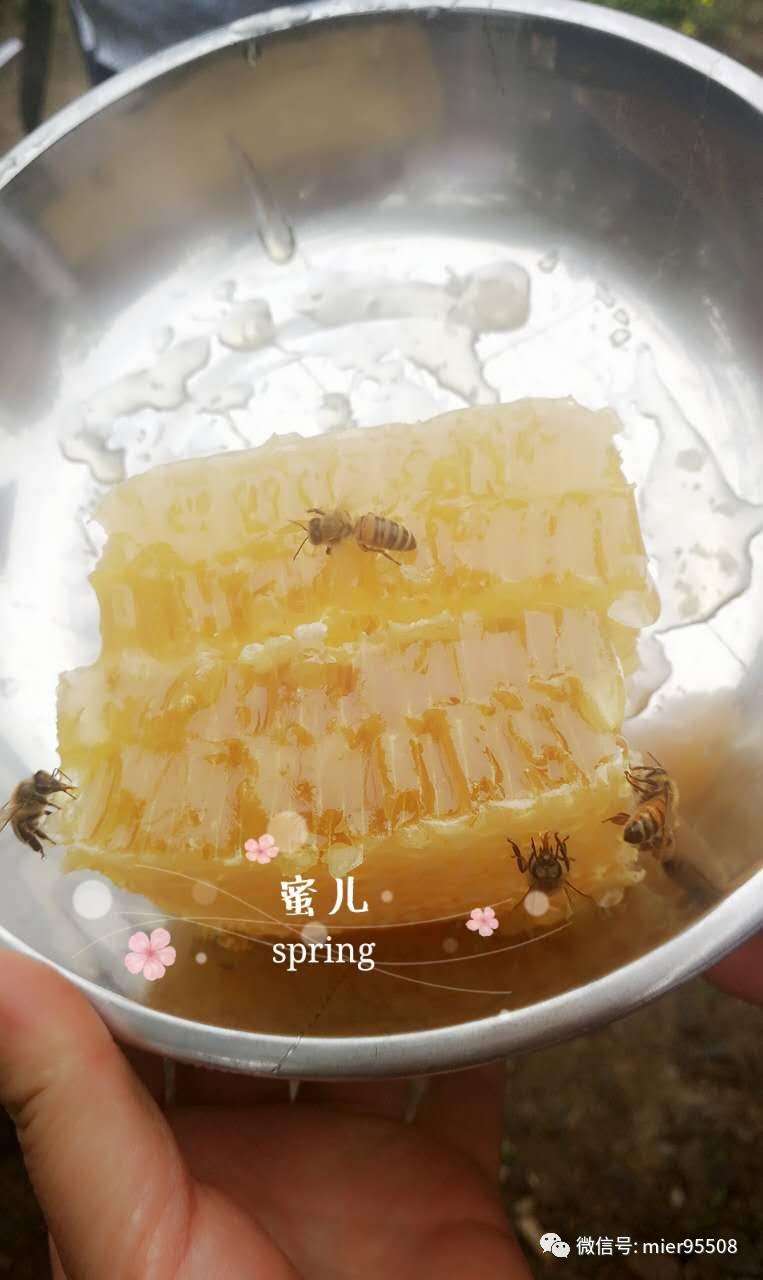 世界最好蜂蜜 ora麦芦卡蜂蜜好吗 蜂蜜青梅 苹果蜂蜜水 怀德堂蜂蜜