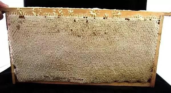 蜂蜜兑水能擦脸的好处 蜂蜜排行 蜂蜜是否性寒 蜂蜜涂阴唇 枸杞花蜂蜜的功效