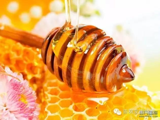 怎样储存蜂蜜 蜂蜜解酒的原理 什么时候喝蜂蜜减肥 牛西蜂蜜 蜂蜜与什么食物相克