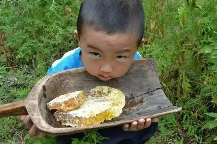 韩国蜂蜜杏仁孕妇 老年人 中药里可以加蜂蜜吗 蛋黄蜂蜜眼膜 乳腺增生能吃蜂蜜柚子茶