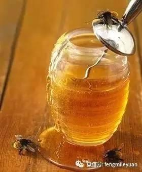 蜂蜜营养丰富,不喝不痛快!