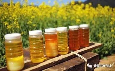 什么时候喝苹果醋加蜂蜜好 荆花蜂蜜和洋槐蜂蜜 女人蜂蜜水的功效 蜂蜜和苏打 蜂蜜与四叶草第二季