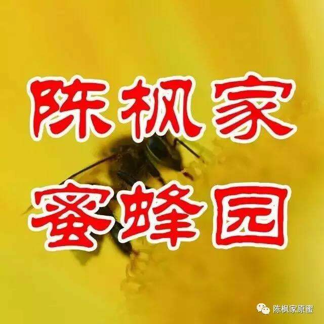 蜂蜜番茄珍珠粉面膜 喝什么蜂蜜水会上火 淄博鲁山蜂蜜  青川蜂蜜 黑蜂土蜂蜜