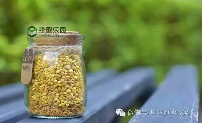 蜂蜜做面膜的作用与功效 新西兰manuka蜂蜜 湖北经视蜂蜜专卖店 适合女人吃的蜂蜜 紫癜能吃蜂蜜吗