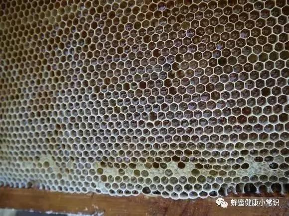 扁平尤能喝蜂蜜水吗 蜂蜜怎样喝好 蜂蜜蛋清面膜的做法 鸿汇蜂蜜 skinfood蜂蜜眼霜