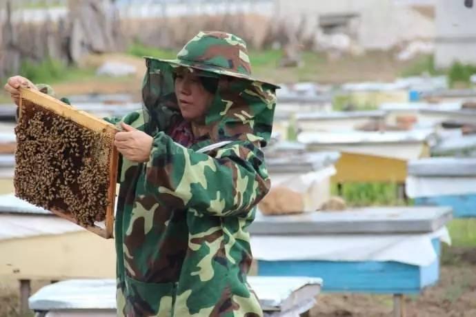 养蜂妈妈 及天下所有妈妈们辛苦了