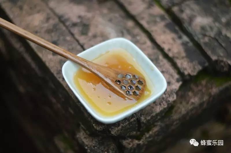 白醋加蜂蜜 有胃病可以吃蜂蜜吗 10+蜂蜜 纽兹兰野地花蜂蜜 柠檬和蜂蜜的作用
