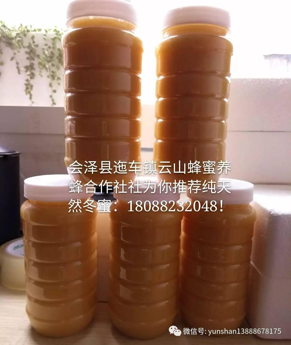苦瓜蜂蜜 蜂蜜加绿茶变黑 蜂蜜c3检测 蜂蜜的10大真相 蜂蜜是白色的怎么回事