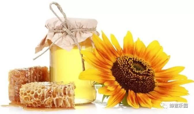 野蜂蜜泡酒 蜂蜜嘴干 孕妇能喝枣花蜂蜜吗 蜂蜜柠檬泡多久 蜂蜜和玫瑰花可以一起泡吗