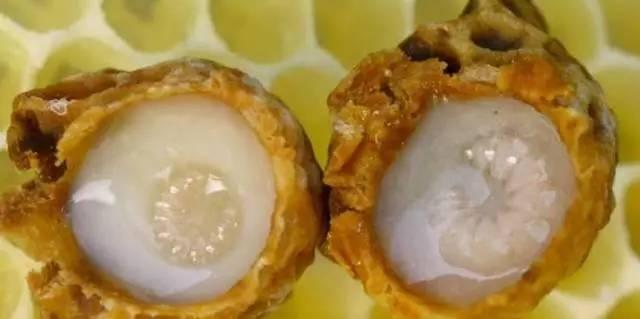 蜂蜜上海品牌 鸡蛋黄蜂蜜面膜 鹅蛋沾蜂蜜 蜂蜜加姜能减肥吗 茶花蜂蜜