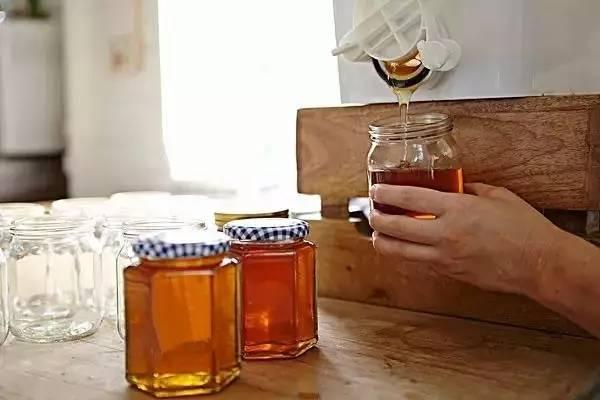 塔斯马尼亚蜂蜜 香水香草蜂蜜 真蜂蜜假蜂蜜 多花种蜂蜜功效 baocms蜂蜜源码
