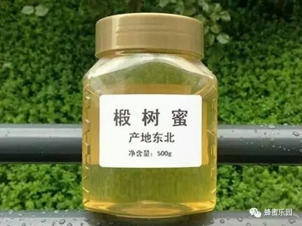 买纯蜂蜜 湖北经视蜂蜜专卖店 蜂花与蜂蜜怎样做 烧鸭蜂蜜 经期喝蜂蜜柠檬水