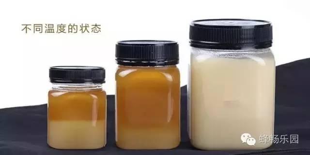 真蜂蜜白色 蜂蜜哪个国家的好 老蜂农蜂蜜 20蜂蜜 椴树蜂蜜什么颜色