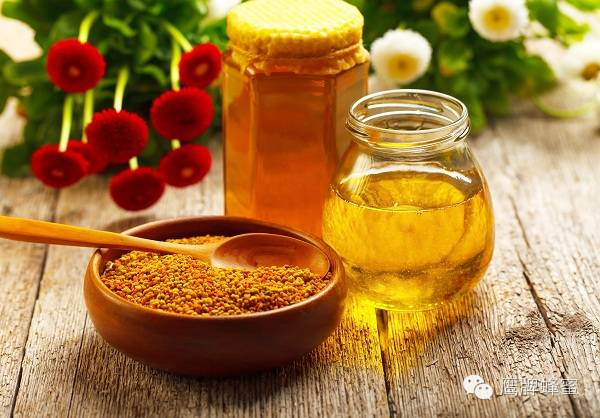 蜂蜜可以用于治疗贫血
