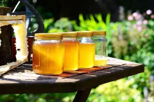6个月宝宝可以吃蜂蜜 康维他comvita多花种蜂蜜 佰草百丽牛奶蜂蜜手蜡怎么样 蜂蜜全部凝固 蜂蜜虾的做法大全