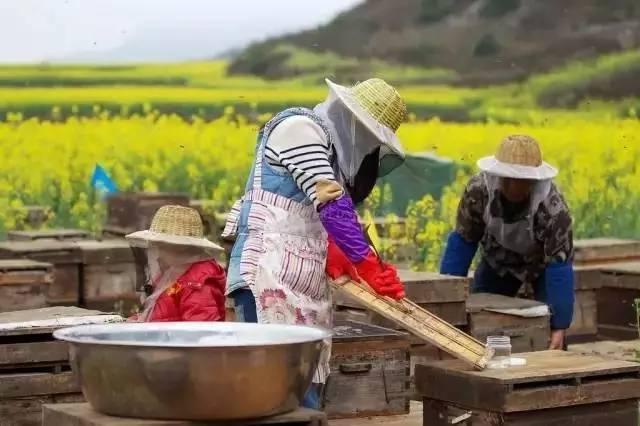 肺炎能喝蜂蜜吗 阵痛喝蜂蜜水 白糖加蜂蜜洗脸 蜂蜜的糖分 两个月的宝宝可以喝蜂蜜水吗