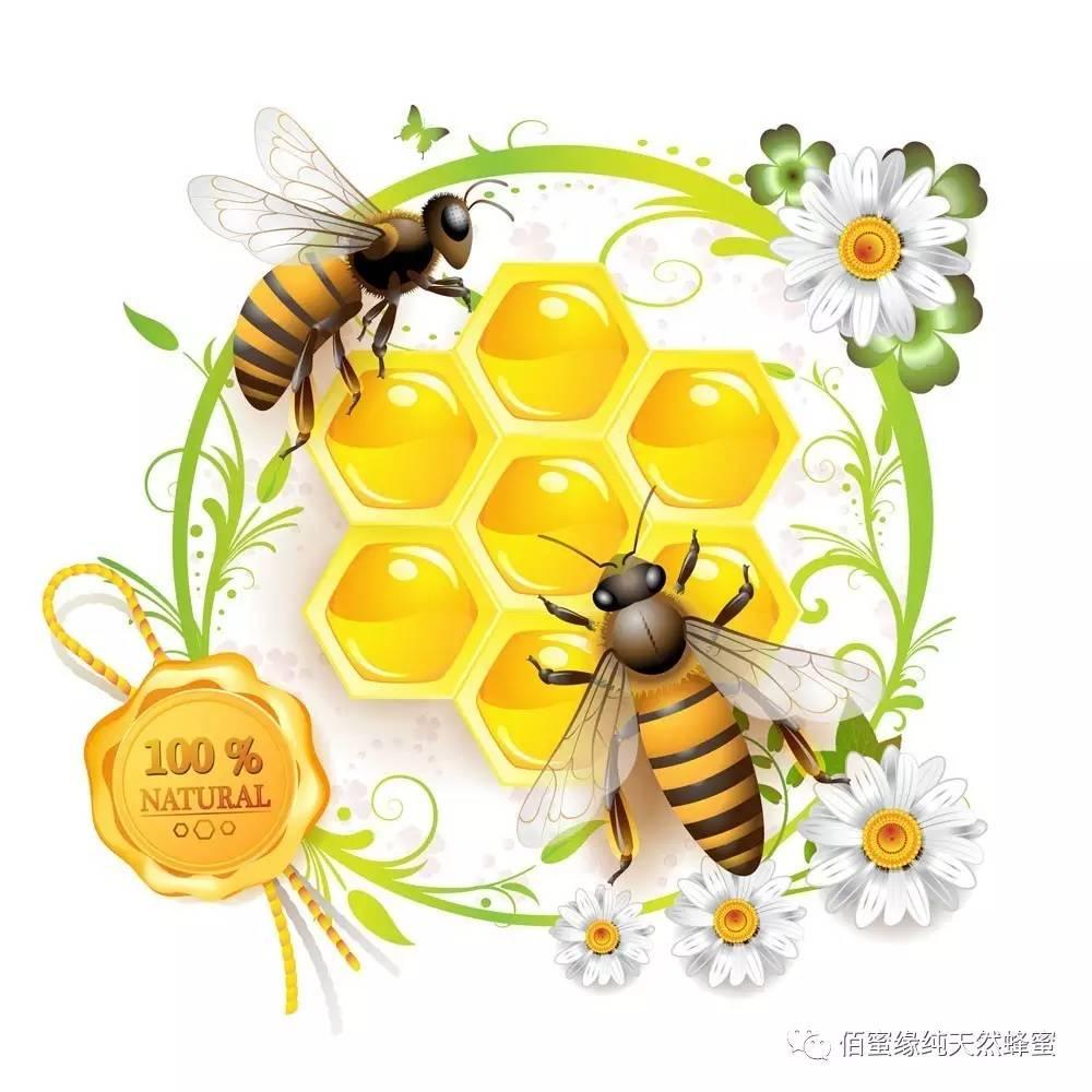 无良商家,请给纯正蜂蜜一条活路!
