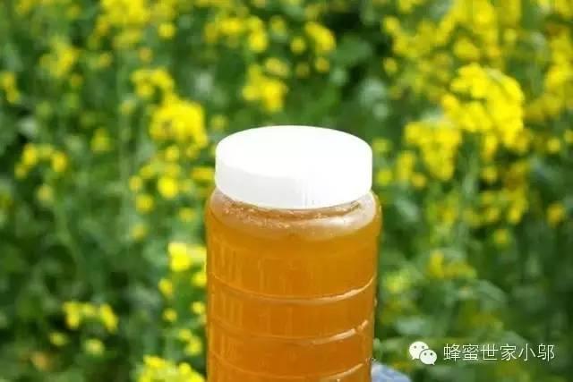 蜂蜜与四叶草第一季 蜂蜜私处变白 纯蜂蜜冬天会结晶吗 洋槐花蜂蜜多少钱 蜂蜜花生的做法视频