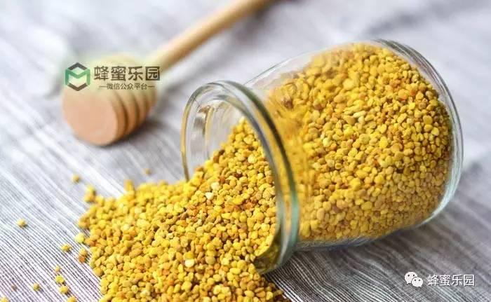 北京蜂蜜堂蜂蜜怎么样 德国朗尼斯蜂蜜 地上有一滩蜂蜜 manuka蜂蜜15 萝卜蜂蜜饮