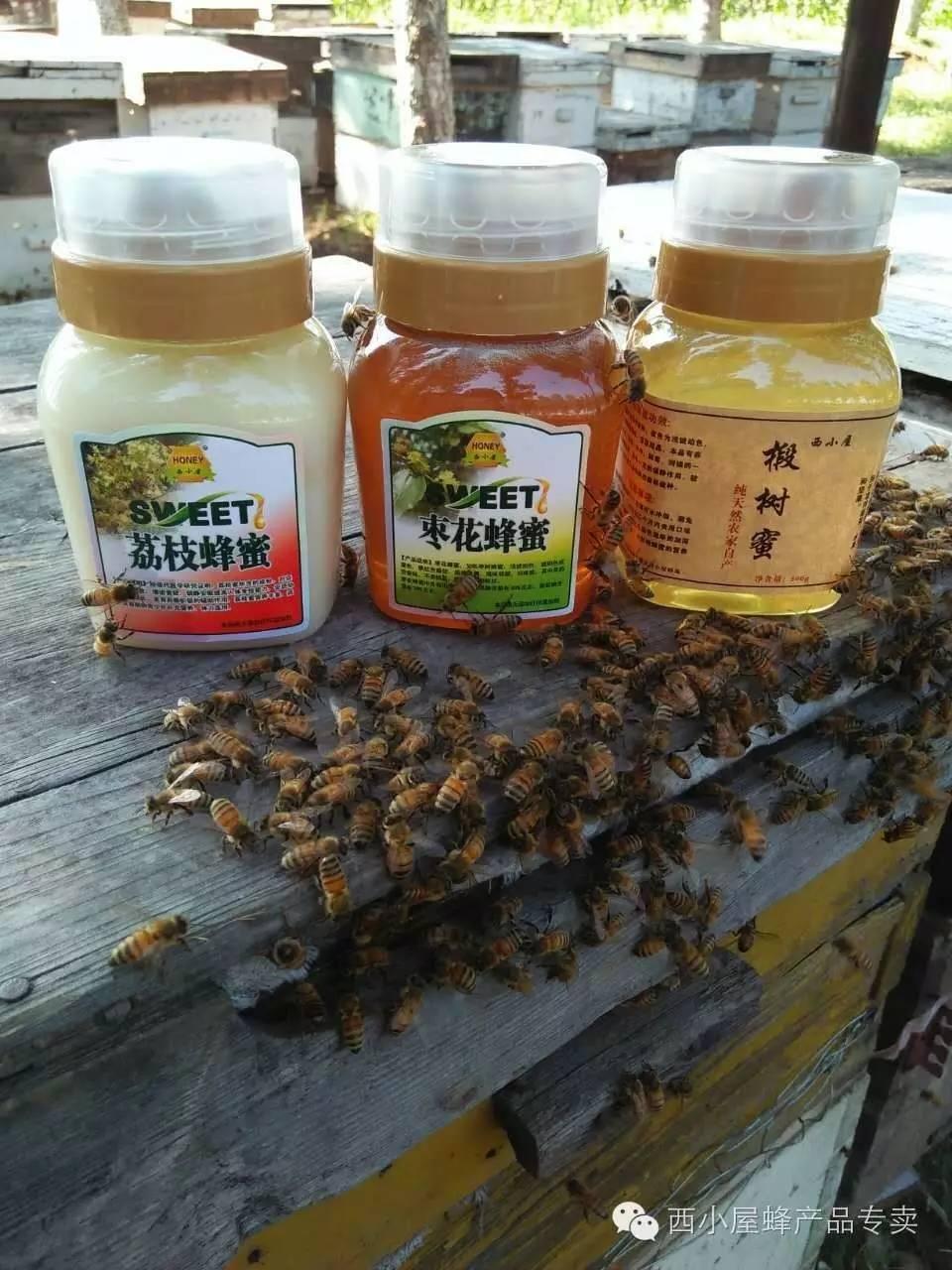 蜂蜜与铁 科益康蜂蜜酒 九峰堂蜂蜜 抹了蜂蜜呀 123蜂蜜