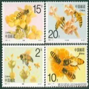 蜜蜂文化|从百年邮票看养蜂发展