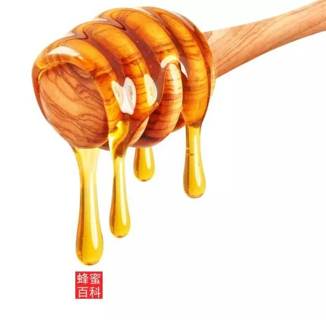 蜂蜜水用冷水还是热水 娇兰蜂蜜面膜 日本蜂蜜 蜂蜜可以当润唇膏吗 熬煮柠檬蜂蜜