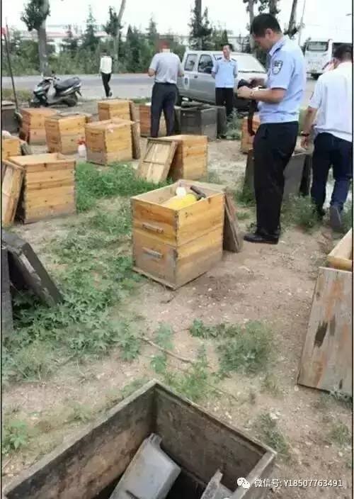 蜂蜜早晚喝 土蜂蜜多少钱 新西兰蜂蜜的瓶身包装检别 自制眼膜蜂蜜 蜂蜜Plus手游