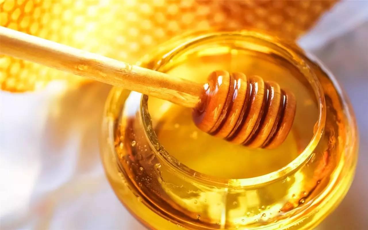 蛋白粉可以加蜂蜜吗 土蜂蜜特点 蜂蜜可以放在豆浆里吗 乌龙茶加蜂蜜 蜂蜜饲料