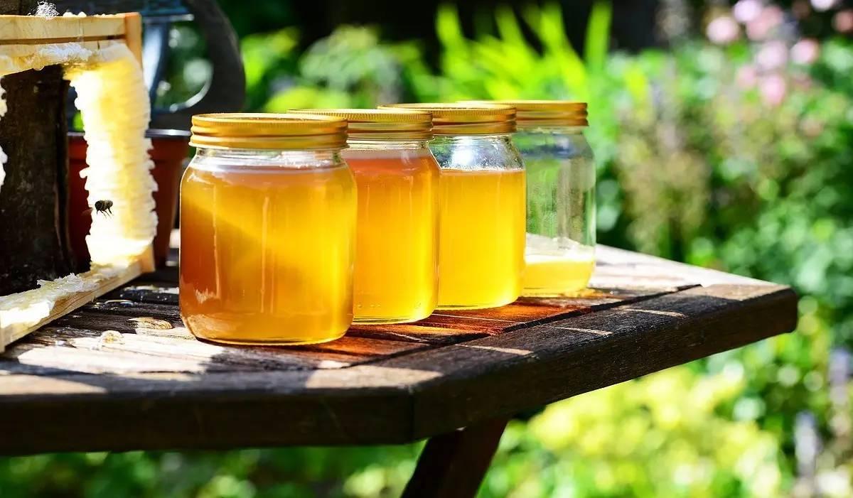 月经期间可以吃蜂蜜吗 喝蜂蜜后能喝豆浆吗 新疆特产山花蜂蜜 锻炼后喝蜂蜜 蜂蜜不见了