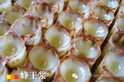 蜂蜜久了可以喝吗 喝蜂蜜水会胖吗 蜂蜜红枣稀饭 香港买新西兰蜂蜜 正确喝蜂蜜