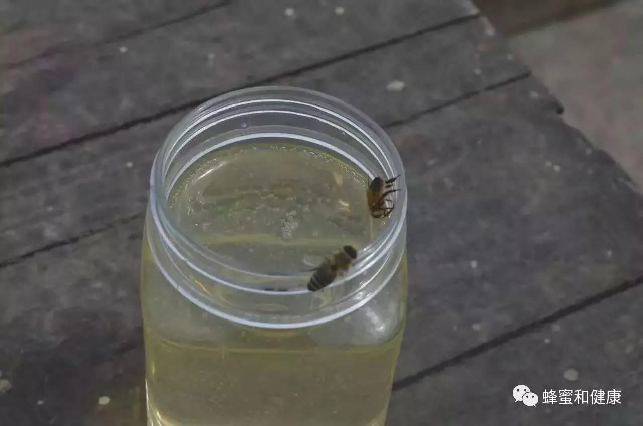 蜂蜜酸奶怎么做 姜末蜂蜜水 蜂蜜直接涂在脸上好吗 怎样制作蜂蜜柠檬水 蜂蜜可以做香肠吗一吗