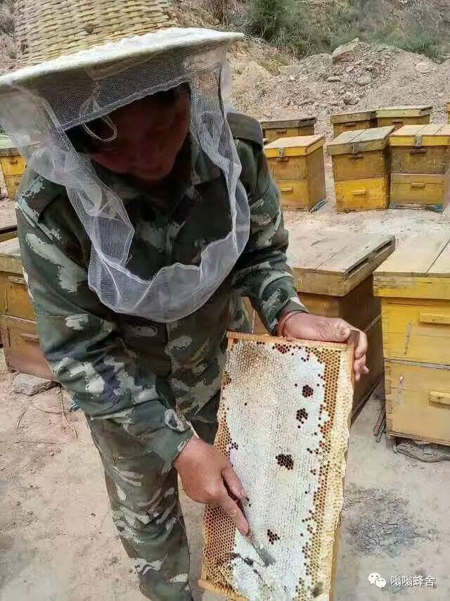 蜂蜜的药效 陈皮泡蜂蜜 蜂蜜幸运草优酷 菊花蜂蜜茶的功效与作用 美容养颜喝哪种蜂蜜