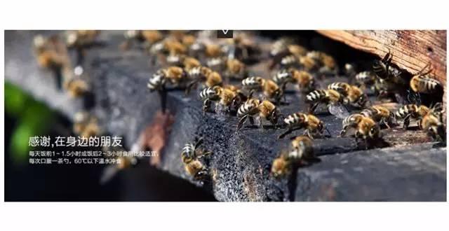 蜂蜜和香蕉 冰糖柠檬好还是蜂蜜柠檬好 蜂蜜生姜水能减肥吗 生姜蜂蜜水起什么作用 陶瓷杯蜂蜜