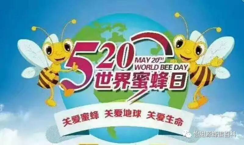 汪氏蜂蜜四宝 蜂蜜产品有哪些 玫瑰蜂蜜水能减肥吗 蜂蜜和豆腐能一起吃吗 养蜂技术