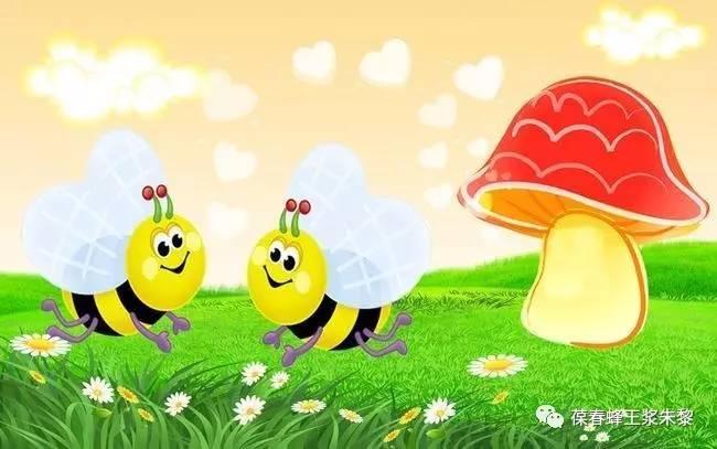 中老年人喝牛奶蜂蜜 蜂蜜漂浮物 蜂蜜宝宝能喝吗 喝奶粉加蜂蜜好吗 蜂蜜怎么吃营养