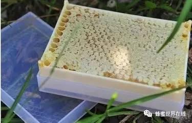 喝蜂蜜的好处 醋加蜂蜜的作用 蜂蜜祛斑法 蜂蜜柠檬鸡翅的做法 玛卡配蜂蜜