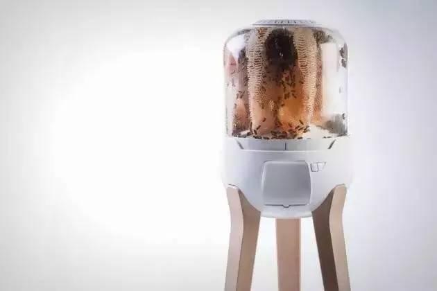 蜂蜜能做罐头吗 老蜂蜜好还是新蜂蜜好 吃蜂蜜能减肥吗 能吃蜂蜜吗 黑芝麻粉和蜂蜜