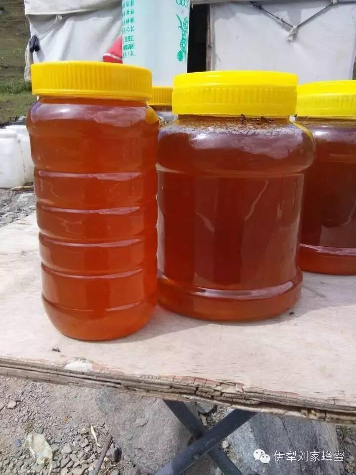 蜂蜜怎么倒出来 怀孕土蜂蜜 喝蜂蜜能改善肝功能 薄荷蜂蜜柠檬 玉米花蜂蜜