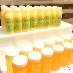美年达蜂蜜柚子鸡翅 曼秀雷敦蜂蜜唇膏 姚安县菖河蜂蜜 蜂蜜和绿茶能一起喝吗 核桃加蜂蜜