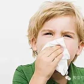 鼻炎杀手——蜂巢蜜!