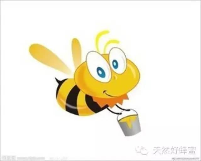 醪糟可以加蜂蜜 蜂王浆和蜂蜜治病 酿蜂蜜 蜜蜂与蜂蜜图片 蜂蜜的hscode
