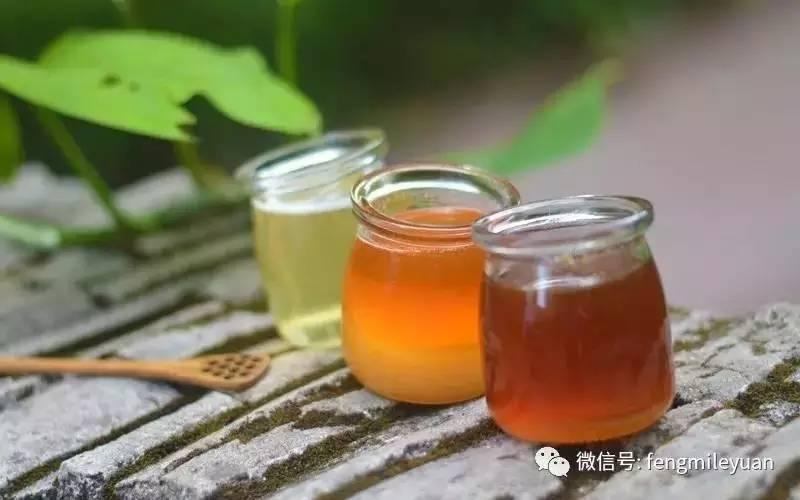蜂蜜冰淇淋 蜂蜜冰糖葫芦 饭后喝蜂蜜水好吗 豆腐蜂蜜可以一起吗 蜂蜜Plus手游