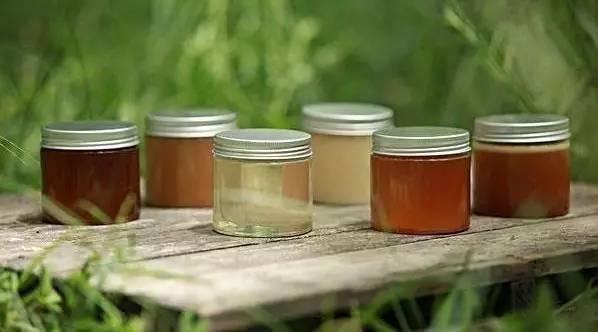 散装蜂蜜 中药加蜂蜜 新之源蜂蜜 蜂蜜木瓜茶的功效 饶河黑蜂蜂蜜