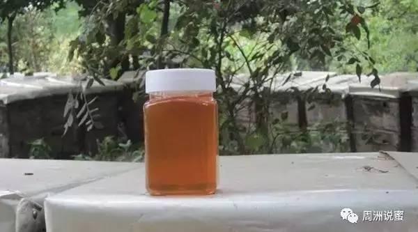 澳洲蜂蜜进口报关 蜂蜜小麻花的制作方法 柠檬蜂蜜枸杞 经常喝蜂蜜好吗 comvita康维他麦卢卡蜂蜜