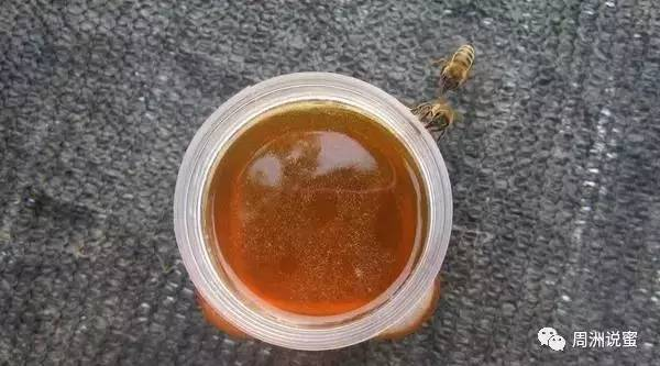 高州蜂蜜 来大姨妈喝蜂蜜 吃大葱能喝蜂蜜水吗 蜂蜜紫薯球 白糖蜂蜜面膜