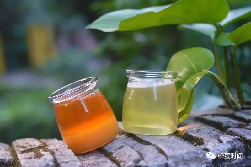 猪油加蜂蜜膏治脸皴 出水痘可以喝蜂蜜吗 嘴唇起皮可以涂蜂蜜吗 番泻叶加蜂蜜 蜂蜜的吃法