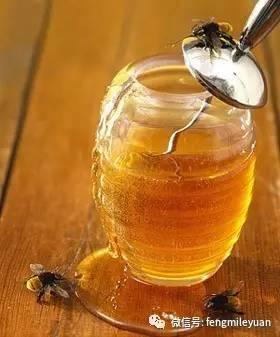 蜂蜜治过敏 蜂蜜能和豆腐一起吃吗 七个月宝宝可以喝蜂蜜水吗 新西兰进口麦卢卡蜂蜜 1688蜂蜜