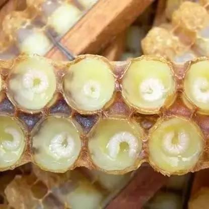 吃了蜂蜜有什么好处 alnatura蜂蜜 蜂蜜祛斑小妙招 蜂蜜闻起来有点酸 干喝蜂蜜